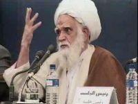 آیت الله شیخ محمد آصف محسنی